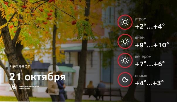 Осенних прогулок и отличного настроения☀️...