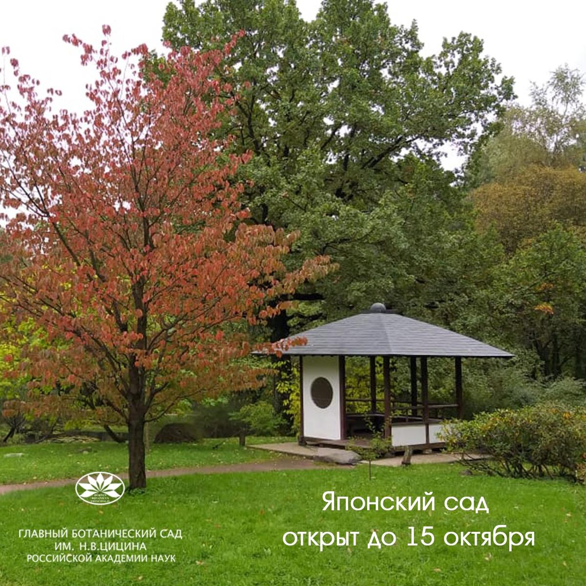 """Ландшафтная экспозиция """"Японский сад"""" Главного ботанического сада им."""