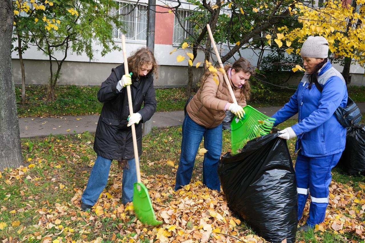 Чиновники и коммунальщики Фрунзенского района угробили экологию района липовой уборкой