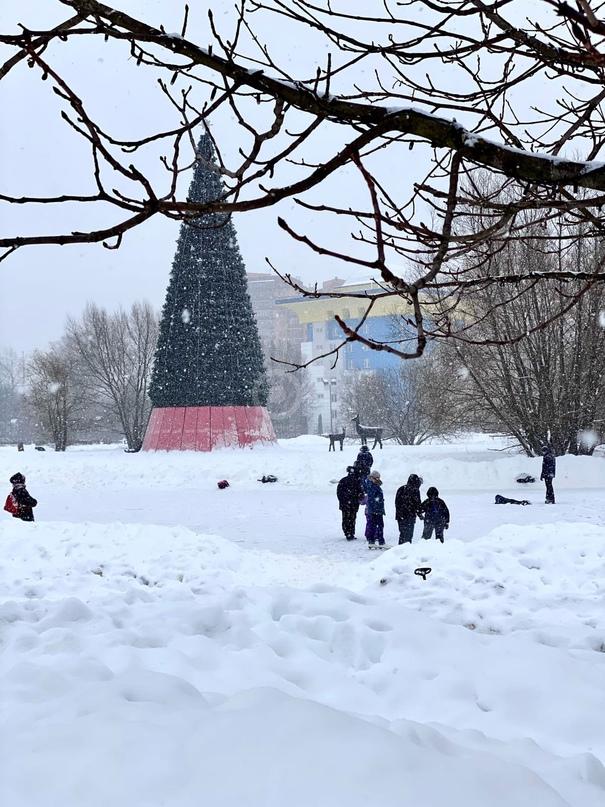 Самые сильные за последние 65 лет морозы ожидаются в Московском регионе 23 февраля 🥶