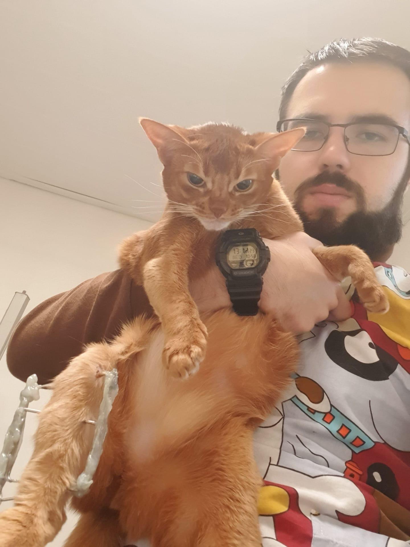 4 совета владельцам домашних животных и подарок от команды ветеринарных врачей [https://vk.