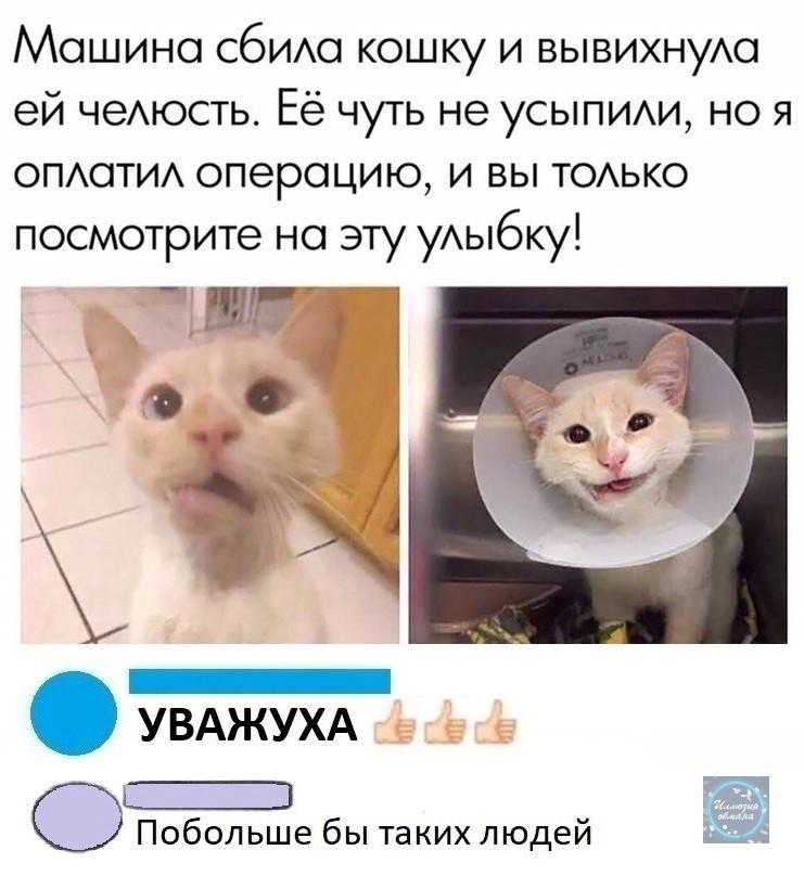 Radis, 36, Neftekamsk