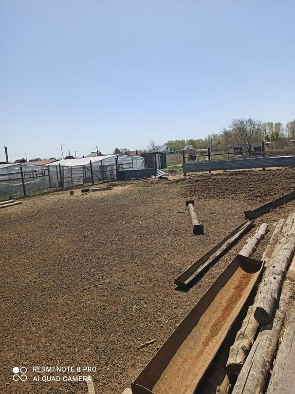 Купить ферму...600 тысяч сарай 27 длина | Объявления Орска и Новотроицка №27846