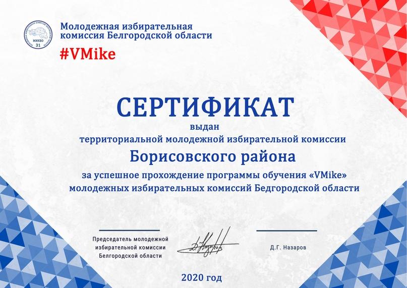 Итоги программы обучения молодежных избирательных комиссий Белгородской области «VMike», изображение №6