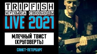 TripFish - LIVE - Млечный твист (Круговерть)