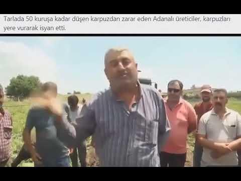 Adanalı üreticiler karpuzları yere vurarak isyan etti