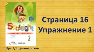 Spotlight 3 класс Workbook страница 16 номер 1 ГДЗ решебник