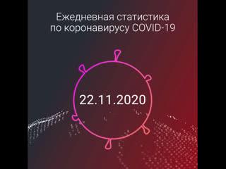 Статистика по коронавирусу: 22 ноября