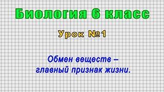 Биология 6 класс (Урок№1 - Обмен веществ – главный признак жизни.)