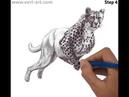 How-to: Draw Cheetah Movement and Expression 7 (Tehnik Cara Cepat dan Mudah Menggambar)