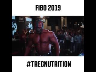Лучшие моменты tibo 2019