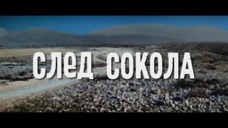 След Сокола (ГДР - СССР, 1968) HD1080, вестерн, Гойко Митич, Барбара Брыльска, советский дубляж