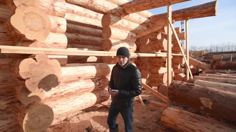 Деревянный дом в стиле дикий сруб из бревна большого диаметра. Видео с производс